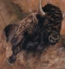 Full Steam Ahead