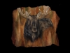 Rock  Solid Presence