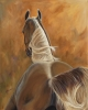Enjoying the sunshine