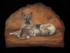 Cuchara and Figuero