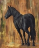 Desert Beauty