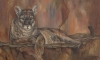 Just a little closer!