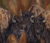 Defiance Times Three