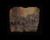 Looking for Goldilocks