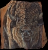 Tatanka Sunset