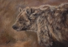 Bearly Smiling